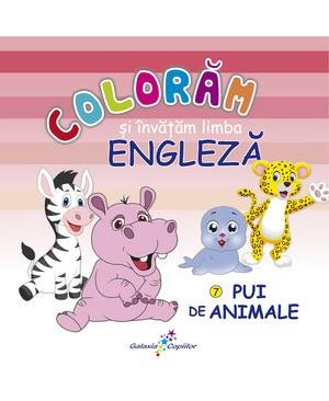 Colorăm și învățăm limba engleză (7). Pui de animale