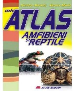 Mic atlas. Amfibieni și reptile