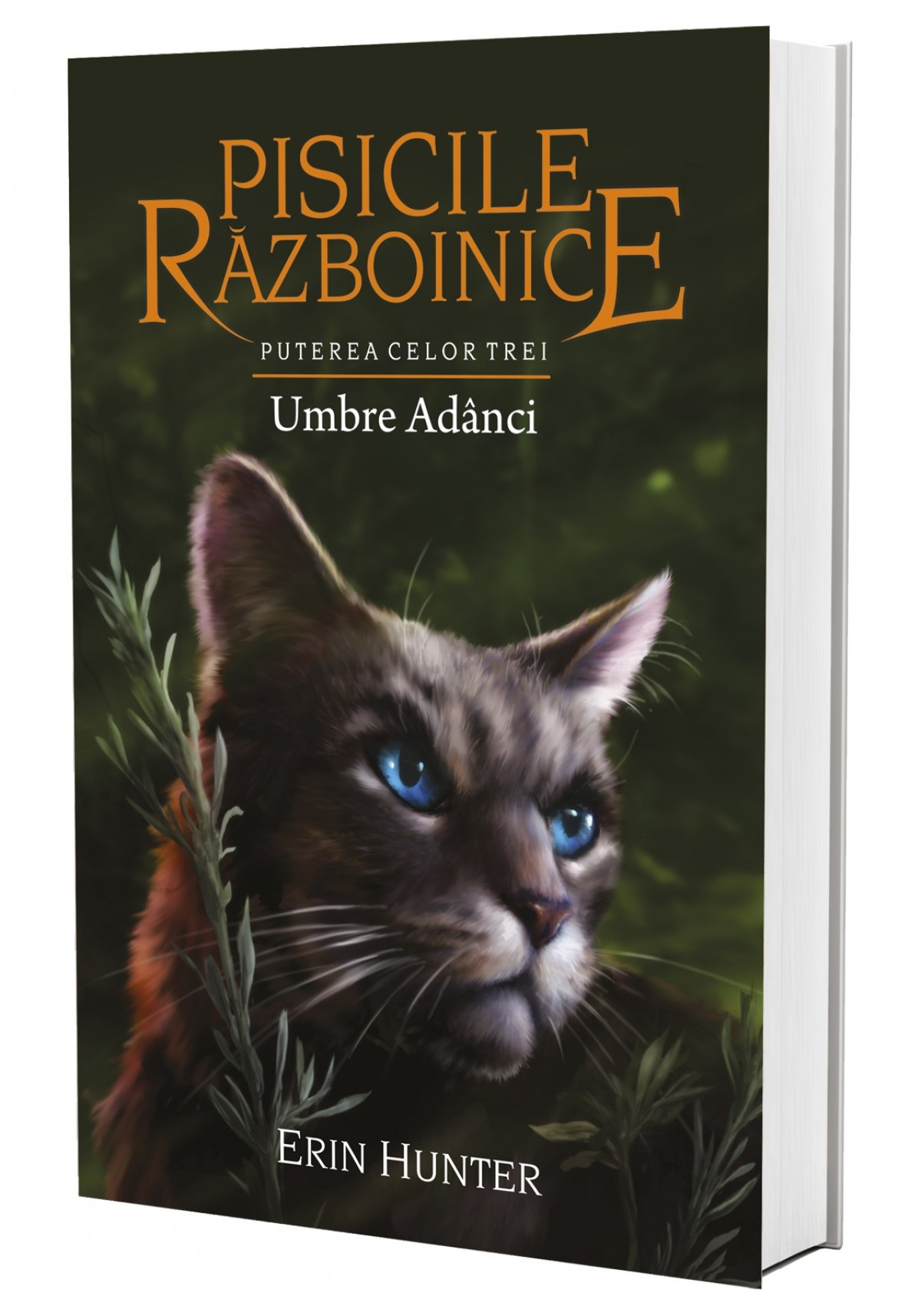 Cartea 17 Pisicile Războinice. Umbre Adânci