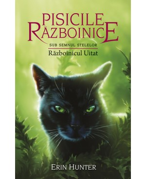 Cartea 23 Pisicile Războinice. Războinicul Uitat